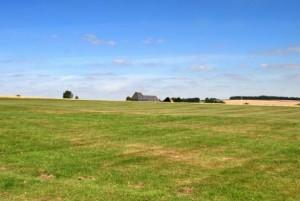 common-panorama-vivid