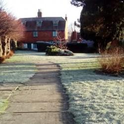 frosty-january