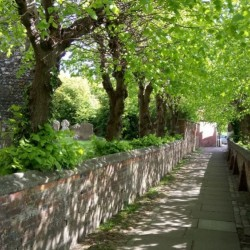 patten-alley-may-2017-001