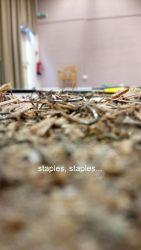 staples-staples