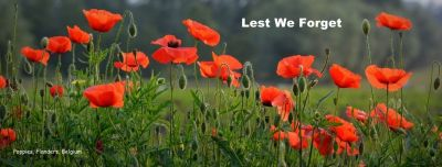 poppies-lest-we-forget